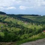Pot po Halozah: Borl – Gorenjski vrh – Borl