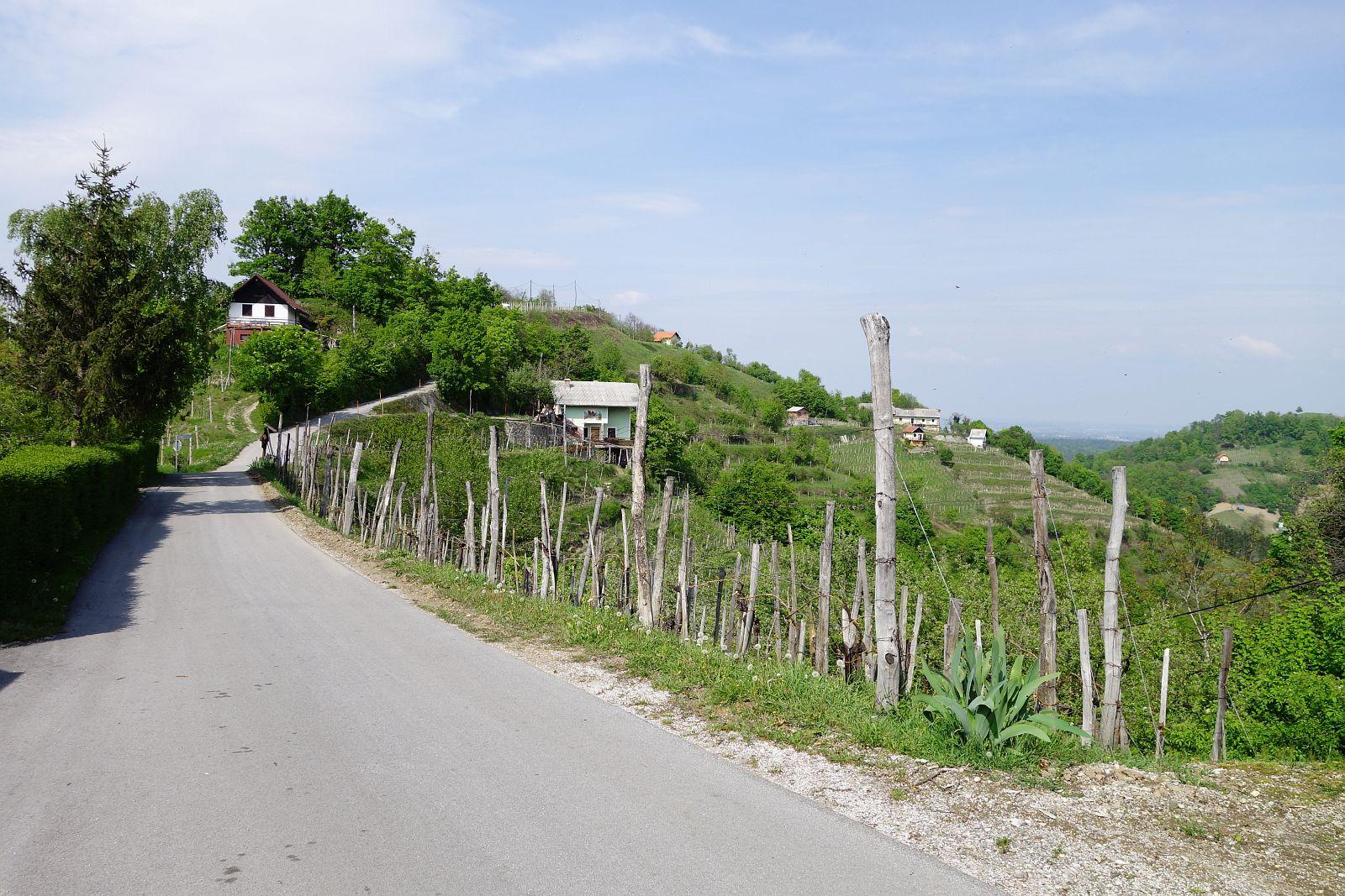 Janški vrh
