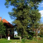Dvorec Ristovec – Rüstenau (fotogalerija)