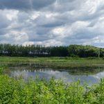 Naravni rezervat Ormoške lagune